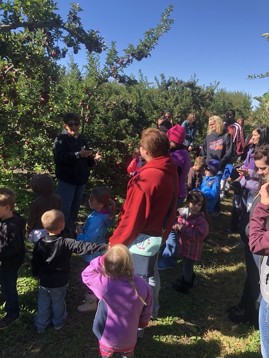 Learning how to pick apples!