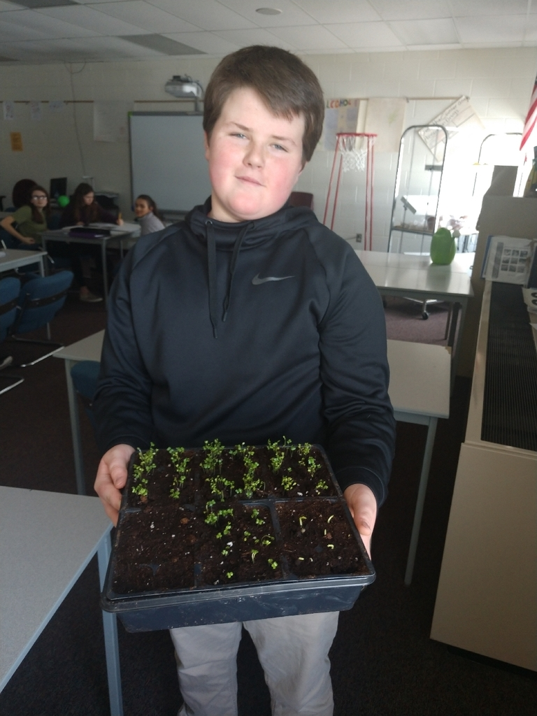 The 7th grade health students are excited to share that we have our first sprouts in our classroom garden!
