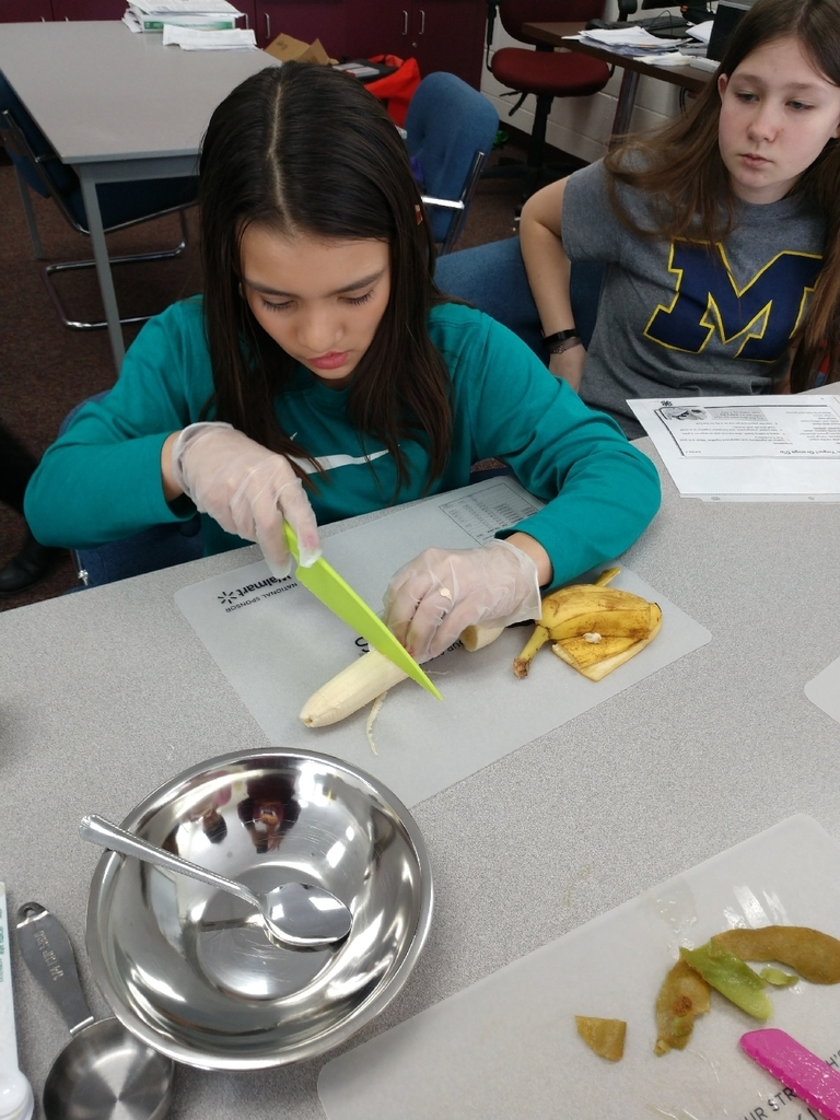 Mrs. Stanley's 7th grade health class had their first cooking lesson with MSU extension today. Students learned about following directions, measurement, knife safety and nutrition. Today's recipe was fruit salad.